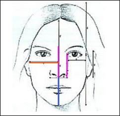 O Formato do Rosto